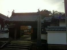 お寺の裏山