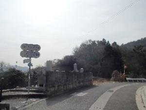 P2010526 - コピー - コピー
